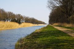 Cycling tour along straight canal with reed and bare trees on the riverbank in spring royalty free stock photo