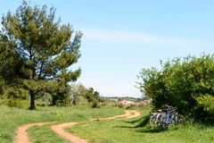 A cycling trail through a forest in Istria, Croatia. Medulin in Istria peninsula, Croatia royalty free stock images