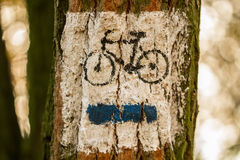 Cycling trail. Marking bike trail on the tree Stock Photos