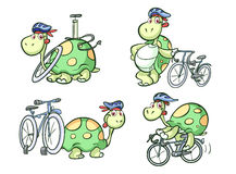 Cycling turtle. Cute turle sport cycling set vector illustration