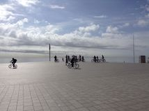 Cycling under the sun. Cycling squad shows itself at seaside Stock Photos