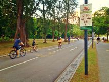 Cycling and walking in East Coast Park. Cyclists and pedestrians on dedicated paths in East Coast Park, Singapore stock images
