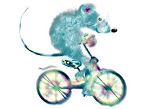 Cycling. White background. Mouse riding a bicycle on a white background. cartoon image Stock Photos