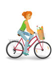 Cycling woman with grocery bag. Woman with grocery bag driving a bike, isolated vector stock illustration