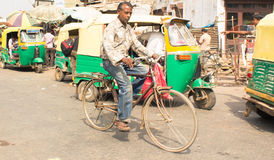The Cyclist - Agra, India Royalty Free Stock Photos