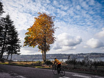 Cyclist Along The Sound. Bicycle rider along Puget Sound Washington State royalty free stock photo