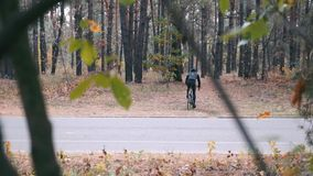 Cyclist athlete in black helmet and sports sunglasses training on road bicycle in autumn forest. Young fit man cycling on bike out. Side at autumn. Hard cycling stock footage