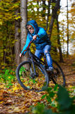 Cyclist autumn forest Stock Images