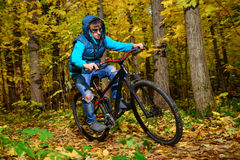 Cyclist in autumn forest Royalty Free Stock Photo
