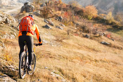 Cyclist with a backpack on mountainbike back view Royalty Free Stock Photo