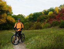 Cyclist with Bike in the Beautiful Autumn Forest Stock Images