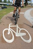 Cyclist on bike route Stock Image