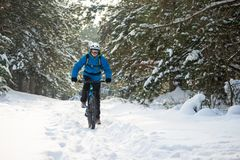 Cyclist in Blue Riding the Mountain Bike in Beautiful Winter Forest. Extreme Sport and Enduro Biking Concept. Cyclist in Blue Riding the Mountain Bike in the royalty free stock image