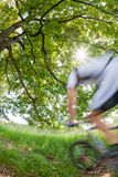 Cyclist in blurred motion riding a bike in a forest Stock Image
