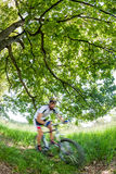 Cyclist in blurred motion riding a bike in a forest Royalty Free Stock Photography