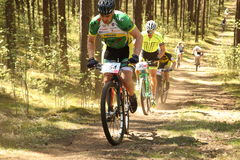 Cyclist competes in the elite MTB race at forest Stock Images