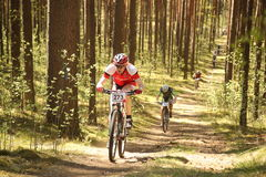 Cyclist competes in the elite MTB race at forest Stock Image