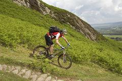 Cyclist On Countryside Track. Side view of a male cyclist on countryside track Stock Photography