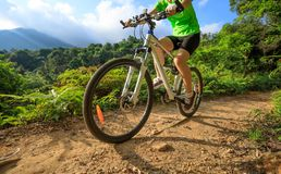 Cyclist cycling on forest trail. Woman cyclist cycling on forest trail Stock Photo