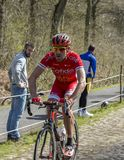 The Cyclist Cyril Lemoine in The Forest of Arenberg- Paris Roubaix 2015 royalty free stock photography