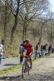 The Cyclist Cyril Lemoine in The Forest of Arenberg- Paris Roubaix 2015 stock images