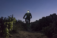 Cyclist descends the hill at night Stock Images
