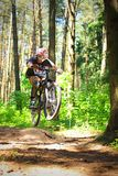 Cyclist in forest. Cyclist rides through the forest Stock Images