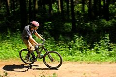 Cyclist in forest Royalty Free Stock Photography