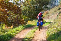 Cyclist on the forest path in autumn. Asturias. Spain Stock Image