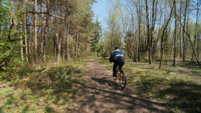 Cyclist  on a forest trail. Cyclist practicing bike on a forest trail. The rider view is from back. Slow motion stock video