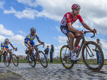 The Cyclist Frederik Frison - Paris Roubaix 2016 royalty free stock image