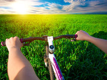Cyclist in green field on a bike. travel Stock Photo