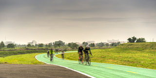 Cyclist. Group of cyclists on the green bicycle way : Motion blurred Stock Photography