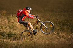Free Cyclist In Red Riding The Mountain Bike On The Trail In Field. Extreme Sport Concept. Manual Or Weelie On MTB. Royalty Free Stock Image - 102355696