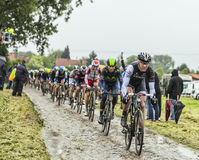 The Cyclist Jens Voigt on a Cobbled Road - Tour de Stock Photo