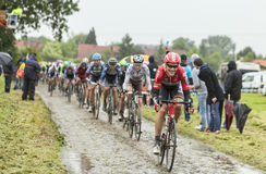 The Cyclist Lars Bak on a Cobbled Road - Tour de France 2014. Ennevelin, France - July 09,2014: The Danish cyclist Lars Bak ( Team Lotto-Belisol) riding in front Royalty Free Stock Photo