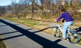 A Cyclist on a Local Greenway Stock Image