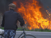 Cyclist looks at a fire near a road Stock Image