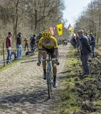 The Cyclist Maarten Wynants in The Forest of Arenberg- Paris Roubaix 2015 royalty free stock photo