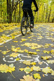 Cyclist in motion on road for bicycle in autumn Royalty Free Stock Photos
