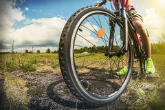 Cyclist on a Mountain Bike on a forest track. Photographed on a fisheye lens. focus on the front wheel. toned image Stock Photography