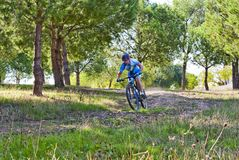Cyclist on mountain bike racing making a career in the field Stock Photography