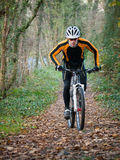 Cyclist on a mountain bike riding in the forest Stock Photography