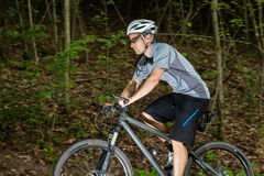 Cyclist on a mountainbike in the forest Stock Photography