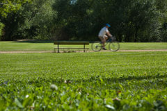 Cyclist in a park Royalty Free Stock Images
