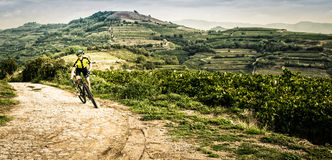Cyclist pedaling through the hills. Royalty Free Stock Photos