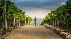 Cyclist pedaling through the hills. Royalty Free Stock Photo