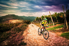 Cyclist pedaling through the hills. Royalty Free Stock Photography