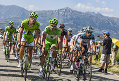 The Cyclist Peter Sagan. Col de Manse, France- July 16, 2013: The Slovak Peter Sagan ( middle) wearing the Green Jersey, riding in front of the peloton on a Stock Images