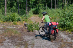 Cyclist practicing mountain bike on a forest trail Royalty Free Stock Images